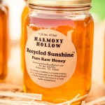 Recycled Sunshine Honey