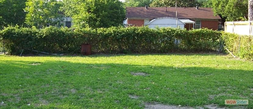 The Empty Yard